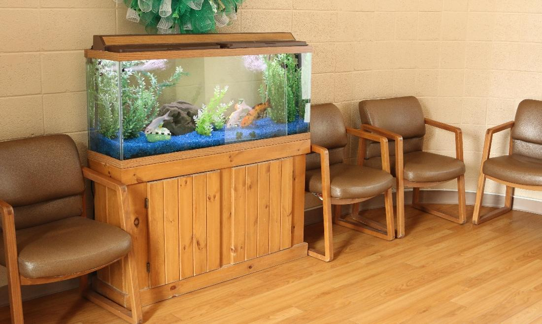 fish tank in waiting room | dentist farmington nm